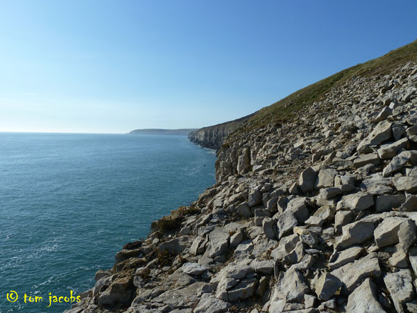 jurassic coast sea cliffs