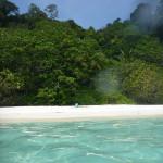 Turtle Beach Perhentian Besar Malaysia